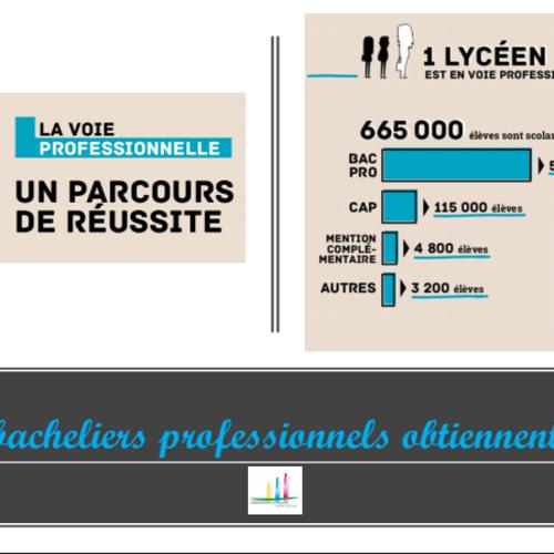 LA VOIE PROFESSIONNELLE : Un parcours de réussite en Bretagne (22)